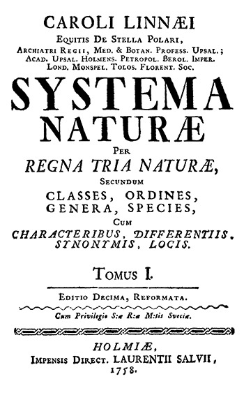 View of Latinus Scientificus: | Journal of Big History